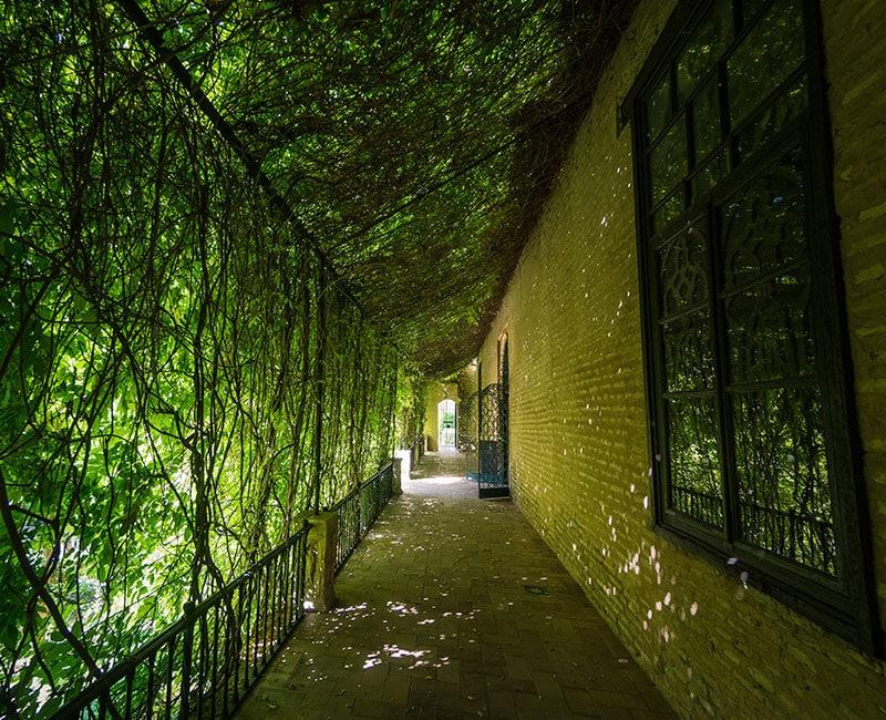 alcazar-sevilla-jardin-galera-1